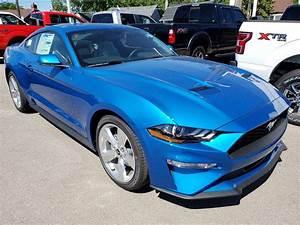 2019 - Velocity blue | Page 10 | 2015+ S550 Mustang Forum (GT, EcoBoost, GT350, GT500, Bullitt ...