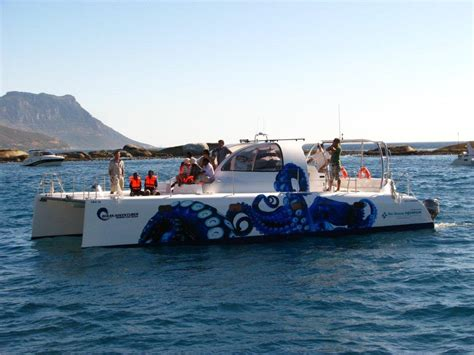 Catamaran Yachts For Sale South Africa by Catamarans For Sale South Africa Wooden Boat For Sale