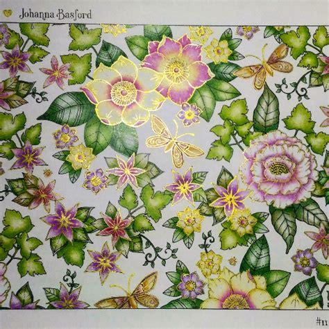 aster templado    johanna basford colouring