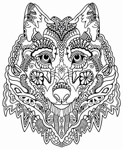 Collage Coloring Pages Animal Getcolorings Printable Pag