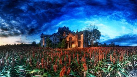 house, HDR, Clouds, Cabin, Plants, Trees, Nature ...