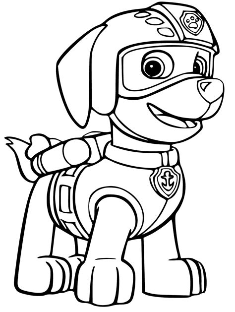 zuma  paw patrol coloring page  coloring pages