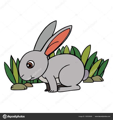 Imágenes: dibujo de conejo a color Conejo Dibujos