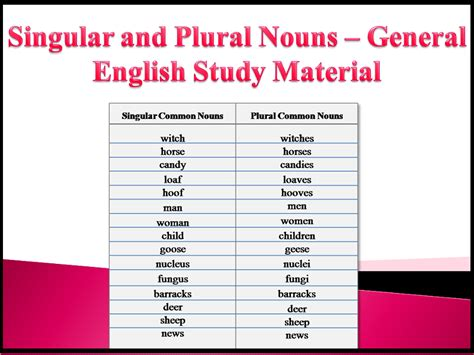 Singular And Plural Nouns  General English Study Material  Exams Daily