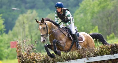 horse eventing breeds jumping cross country levels competition dressage breed exhilarating agility discipline requires combining