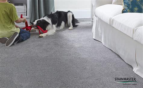 coles flooring stainmaster carpet 6 floor matttroy