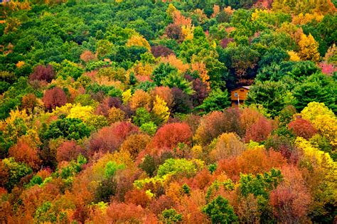 september color kaleidoscope of autumn colors is heaven on earth 46 pics