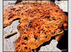 Blue Gum Eucalyptus Burl Coffee Table wood slab by