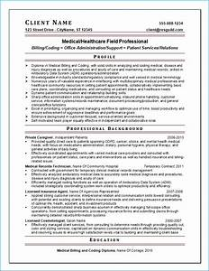 resume writing guild resume example 5 With professional medical resume writers