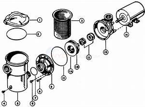Poolco Vortex Xl Pump Parts
