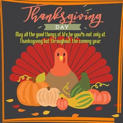 Card Thanksgiving Turkey 123greetings Cards Greetings Greeting