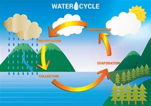 Water Cycle Diagram
