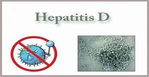 Describe about ... Hepatitis D
