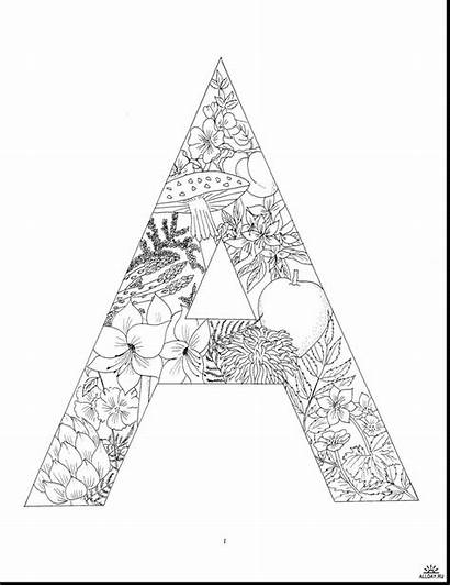 Coloring Pages Letters Adult Alphabet Books Dover