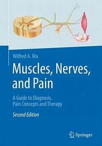 Muscles  Nerves  And Pain   A Guide To Diagnosis  Pain