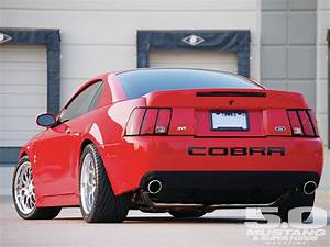 Mean and clean looking 2004 Ford Cobra Mustang (Terminator) (With images)   Mustang cobra, Ford ...