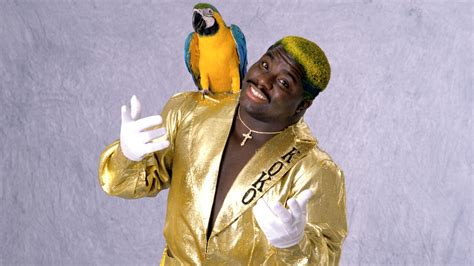 Birdman The Case For Koko B Ware  Last Word On Pro