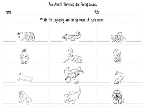 mrs bohaty s kindergarten kingdom all things zoo