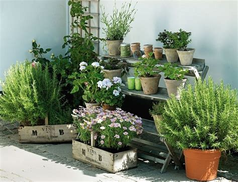 7 Apartment Herb Garden Tips