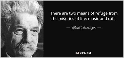 albert schweitzer quote    means  refuge