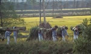 North Korea Hard Labor Camps