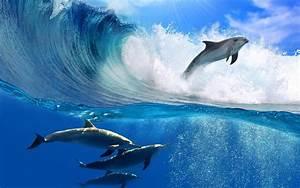 Wave Desktop Wallpaper - Wallpaper, High Definition, High ...