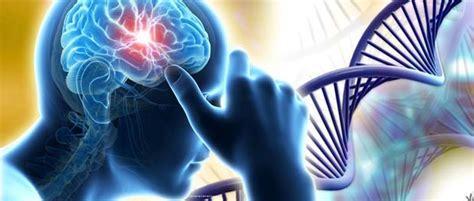 dna methylation  explain  people respond  fear