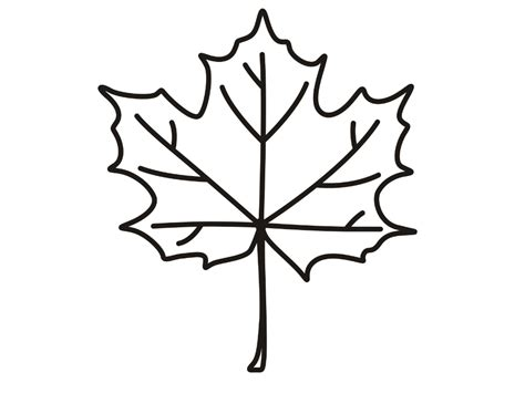 Coloring Picture Of Maple Leaf Coloring Page