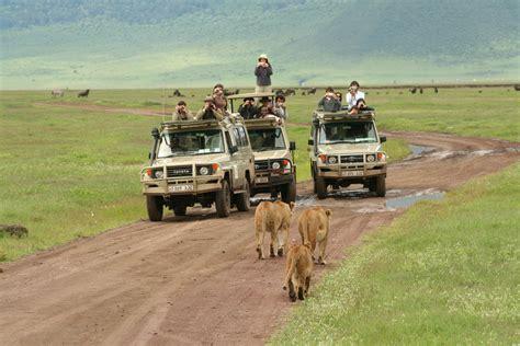 nairobi  nairobi safari serengeti  ngorongoro crater