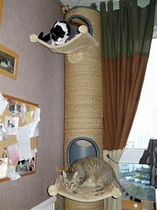 Arbre à Chat Fait Maison : mon chat s 39 ennuie ~ Melissatoandfro.com Idées de Décoration