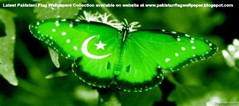 Pakistan Flag Animated Wallpaper - pakistan flag wallpaper august 2014