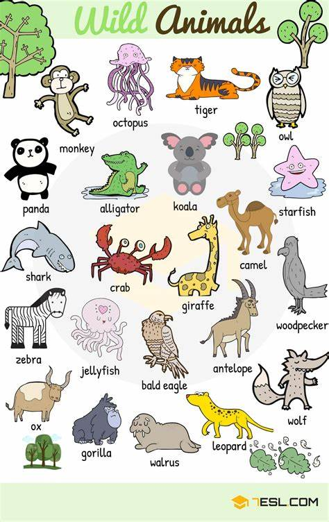 Animal Names: Types Of Animals With List & Pictures 7 E S L