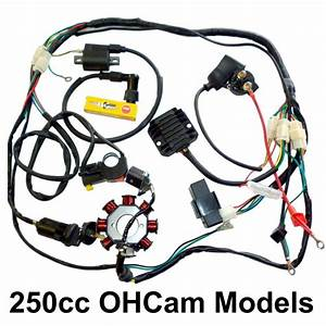 250 Ohc Bike Electrics Harness Zongshen Loncin Magneto