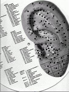 Auricular Therapy Ear Chart 11 Best Images About Auriculoterapia On Pinterest Kid
