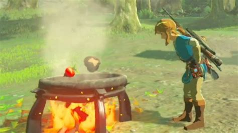zelda breath   wild   master cooking  elixir