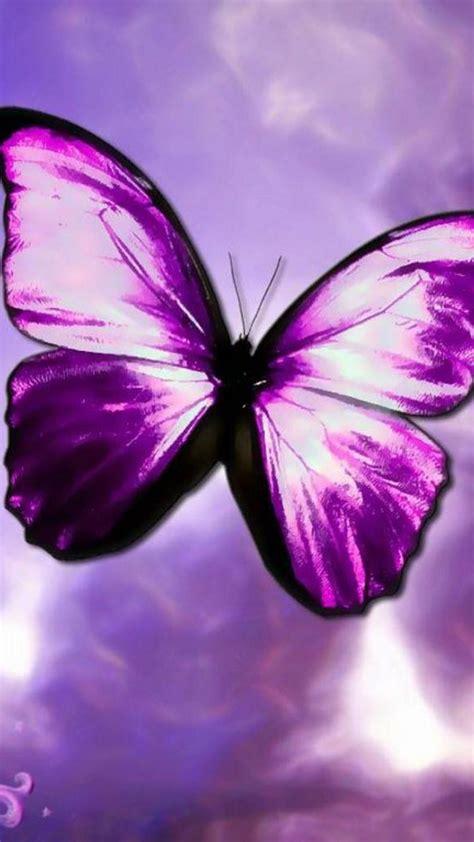 purple butterfly aesthetic wallpapers