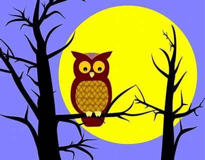 Owl Halloween Clip Tree Clipart Owls Panda