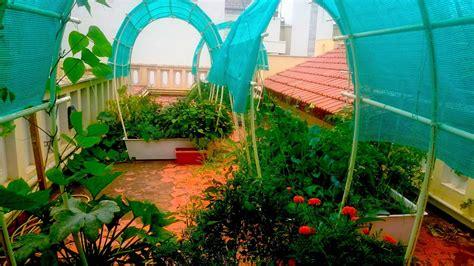 smart gardens  terrace complete  watering garden