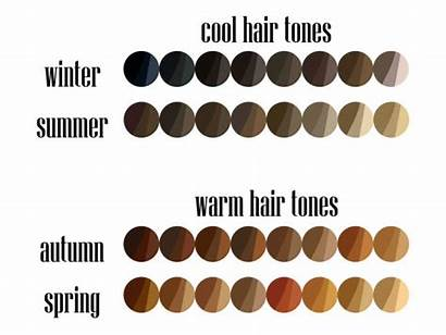 Hair Vector Bright Palette Clip Illustrations Colors