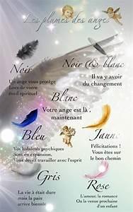Signification Plume Noire : les actualit s de teosofia voyance ~ Carolinahurricanesstore.com Idées de Décoration