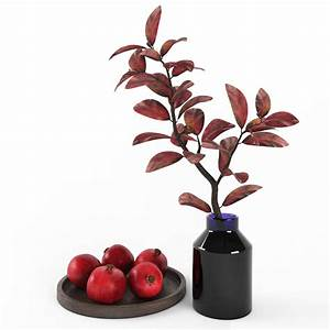 3d pomegranate decor set turbosquid 1161851 for Pomegranate interior design decoration