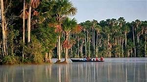El Parque Nacional Bahuaja Sonene