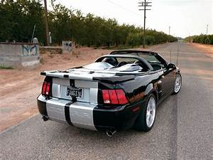 M5lp 0705 08 Z+2003 Ford Mustang Cobra+convertible Rear View - Photo 9289530 - 2003 Ford Mustang ...
