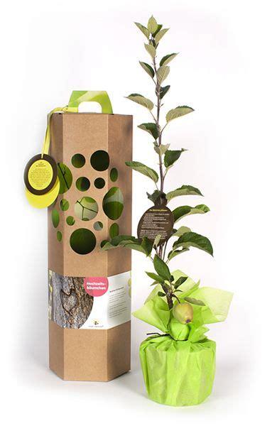 baum als geschenk zur hochzeit ein hochzeitsbaum als geschenk zur hochzeit ist ein nachhaltiges geschenk f 252 r immer ein