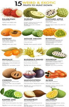 spices spice chart chart school hindi language learning
