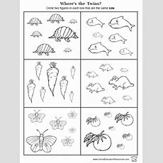 6 Best Images Of Free Printable Size Worksheets  Preschool Size Worksheets, Free Printable
