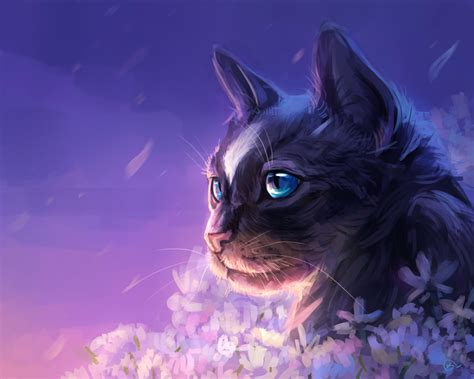 cat fantasy wallpaper hd