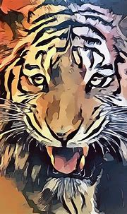 Tiger Animal Teeth · Free image on Pixabay
