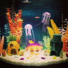 spongebob aquarium decor petsmart how to set up your new aquarium schooling community fish