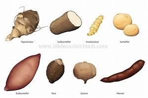 food and kitchen :: food :: vegetables :: tuber vegetables ...